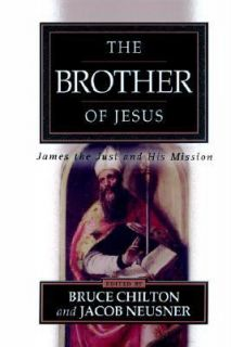 The Brother of Jesus James the Just and His Mission 2001, Paperback