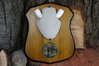 TROPHY ANTLER MOUNTING KIT PLAQUE MEDALLION BUCK MOUNT
