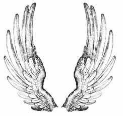 angel wings in Stamping & Embossing