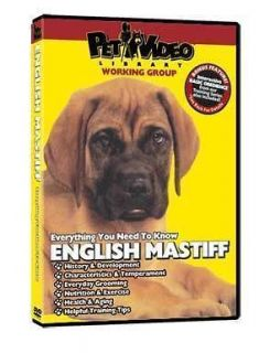 ENGLISH MASTIFF ~ Puppy ~ Dog Care & Training DVD BONUS