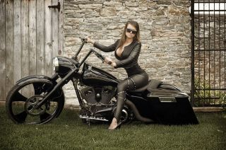 Harley davidson part in Motorcycle Parts