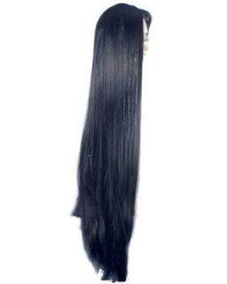 Budget Version Morticia Addams Family Cher Costume Wig