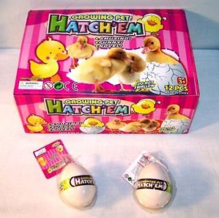 12 DUCK HATCHING EGGS chicken bird GROW magic tricks