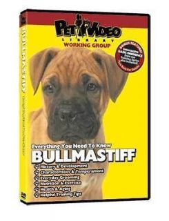 BULLMASTIFF ~ Puppy ~ Dog Care & Training DVD New BONUS