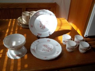 Arcopal France Florentine Dish Set ~ 11 Pieces ~ Plates Bowls Cups