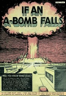 BUILD A FALLOUT SHELTER   Nuclear Books/Films on CD