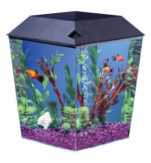 Gallon AquaView Diamond Shaped Fish Tank