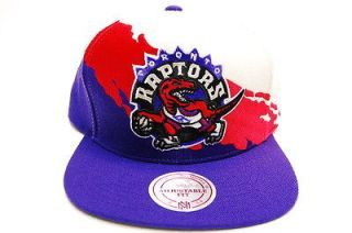 Toronto Raptors Paintbrush Snapback Basketball Mitchell & Ness Hat