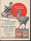 HEN CHOW CHICKEN CHOWDER ROOSTER FARM SEED FEED GRAIN LANE BIRD A