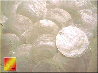 Capiz Shells 2 Round Two Holes Seashells Craft (100)