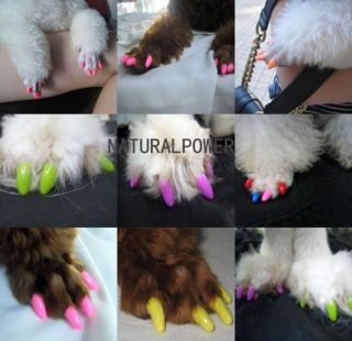 20pcs pet/Dog/Cat Nail wrap/Caps Claw Control glue/adhesive colorful