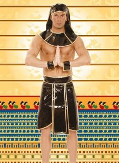 King of the Nile Adult Egyptian Pharaoh Costume