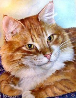 Orange MAINE COON TABBY CAT GICLEE Longhaired Kitten Kris KashetaOrange Tabby Maine Coon Kitten