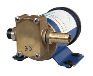 Durite 0 673 65 Oil Transfer Pump 20 60 litre/min 12 volt Bx1