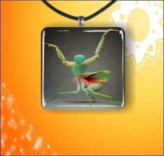 INSECT LIFE BROWN & ORANGE PRAYING MANTIS GLASS 1 PENDANT NECKLACE