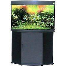 Compass Rose 50 Gallon Corner Aquarium, Includes Aquarium Kit