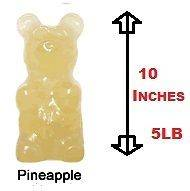 Worlds Largest Gummy Bear Giant 5 Pounds 10 Inches tall Sour Apple
