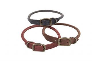 rolled leather dog collars in Leather Collars