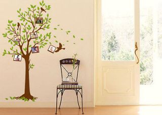 Frame Tree Birds Wall Stickers Decals Decor Art Mutural Removable