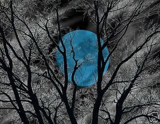 Black White Tree Blue Moon Home Wall Art Matted Picture