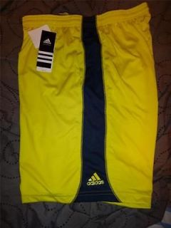 adidas climalite in Shorts