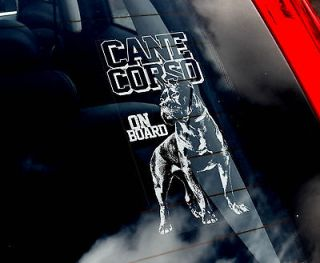Corso   Car Window Sticker Sign   Corz Molosser Dog   n.Collar/Harness