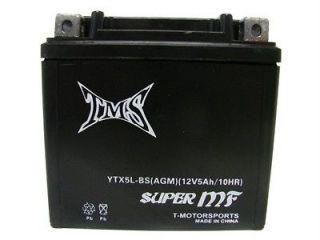 AGM YTX5L BS Battery for YAMAHA TTR 230E WR 250F HONDA CRF 150F 230F