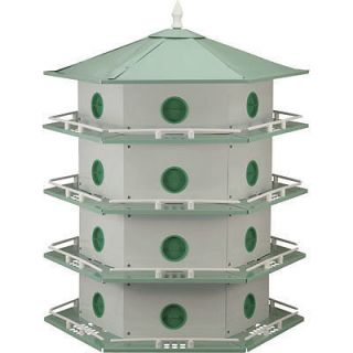 purple martin bird house in Birdhouses