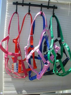Economy Turnout Halter / Horse Lot of 4