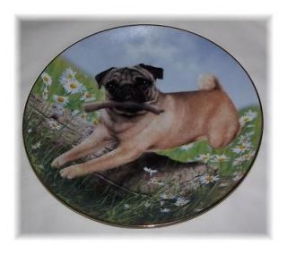 NeW DANBURY MINT PUG PLATE PROUD PUGS Dog Puppy Limited Edition IN BOX