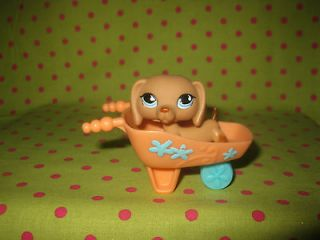 Littlest Pet Shop Brown Dachshund w/ Blue Eyes & Fun Accessory #518