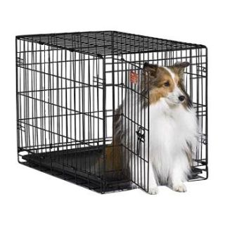 Home Dog Carriers, Crates & Kennels Midwest iCrate Single Door Folding