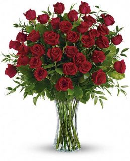Breathtaking Beauty   3 Dozen Long Stemmed Roses Flowers, Breathtaking