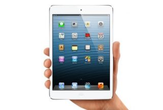 Apple iPad Mini Wi.Fi + Cellular 16 GB  Nero e Ardesia, iPad. Compra