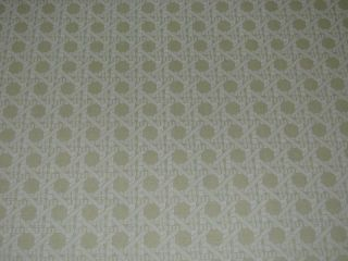 HOT PAPER BRUNSCHWIG & FILS MONTEREY 1 WALLPAPER  $30 A DOUBLE