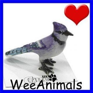 Little Critterz Mischief Blue Jay Bird Miniature Figurine Wee Animal