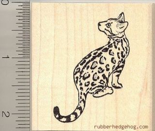 bengal cat rubber stamp h10004 wm domestic leopard time left