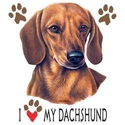 Dog Tshirt I Love My Dachshund Cute Puppy Pet Paw Canine Weiner