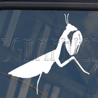 praying mantis decal car truck bumper window sticker from thailand
