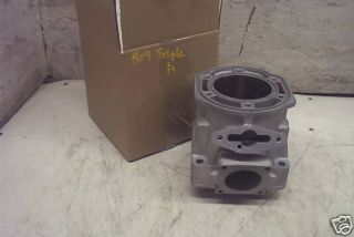 Ski Doo Rotax 800 809 Engine Cylinder Mach Z Grand Touring New Reman.