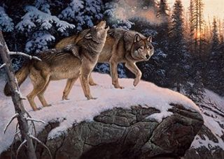50009 Call Of The Wild Wolf 550 Pc Puzzle Artist Hayden Lambson Free