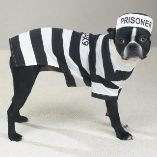 casual canine prison pooch halloween dog costume new more options