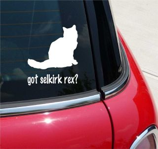 GOT SELKIRK REX? CAT GRAPHIC DECAL STICKER VINYL CAR WALL