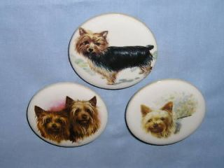 yorkshire terrier dog magnet set of 3 porcelain decal time