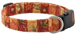 Fall Striped Acorn Designer Dog Collar   Large