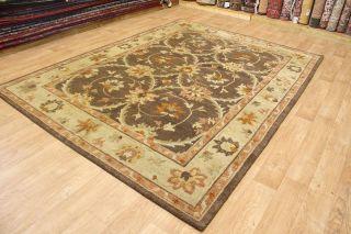Stunning New Brown Agra Nepal Indian Wool Handmade Oriental Area Rug