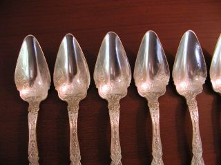 Wm. Rogers & Son Alhambra (1907) (10) Fruit/Orange Citrus Spoons