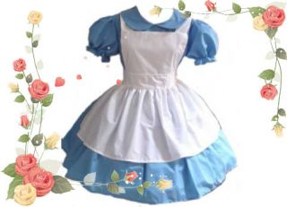 Alice in Wonderland Costume Gothic Lolita Dress Apron