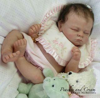 And Cream SOLD OUT Andi Linda Murray Now Reborn Baby Alisha Girl Plate