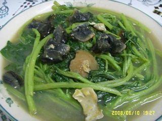 ) Oriental Vegetable Seeds   Asian Red Leaf Amaranth (salad vegetable